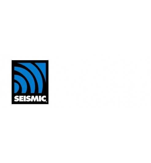 Seismic bearings